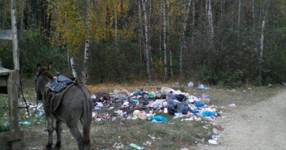 Кисловодская гора Кольцо в кольце мусора. Общественные экологи бьют тревогу