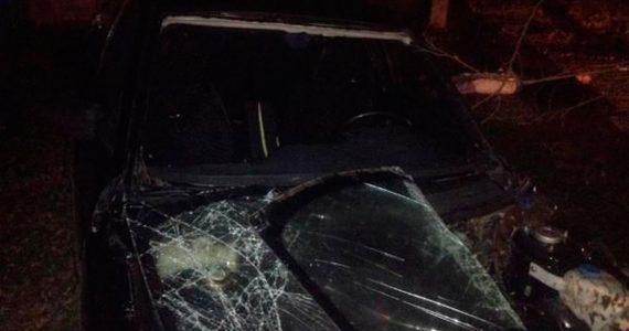 Смертельная авария на Ставрополье: водитель без прав врезался в дерево