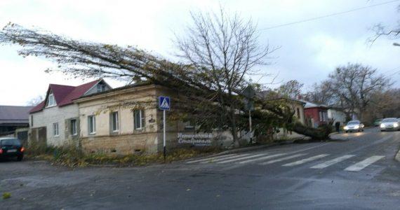 Сильный ветер в Ставрополе 22 ноября. Последствия. Фото
