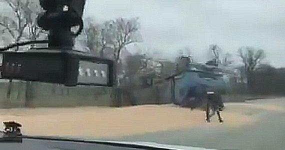 Зерновоз перевернулся на границе Ставропольского и Краснодарского краёв. ВИДЕО