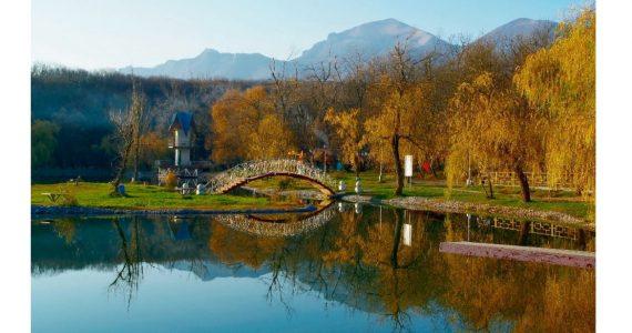 Пейзажи Железноводска станут экспонатами выставки