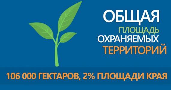 В региональном правительстве подвели итоги года экологии в Ставропольском крае