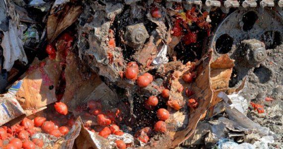 На рынке Пятигорска нашли 900 килограммов томатов из Турции. Овощи уничтожат