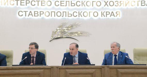 В Ставропольском крае введён новый порядок субсидирования аграриев