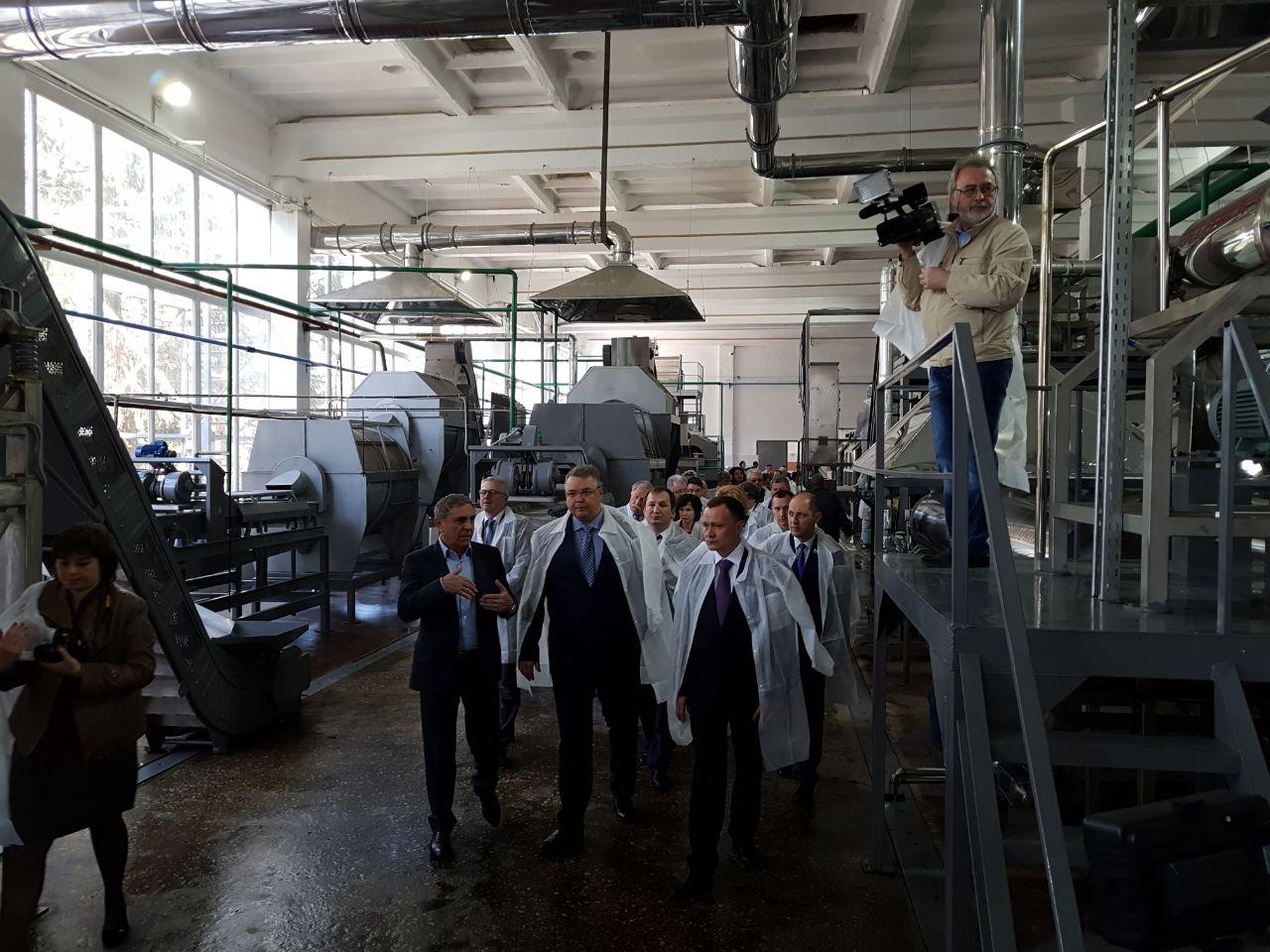 ВГеоргиевске открыли консервный завод стоимостью полмиллиарда руб.