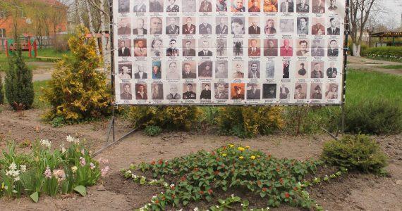 5-конечную звезду из цветов высадили к Дню Победы воспитанники ессентукского детсада