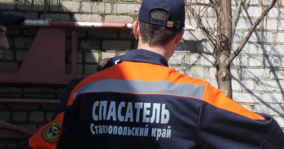 ПАССовцы спасли котят, провалившихся в подвал ставропольской многоэтажки