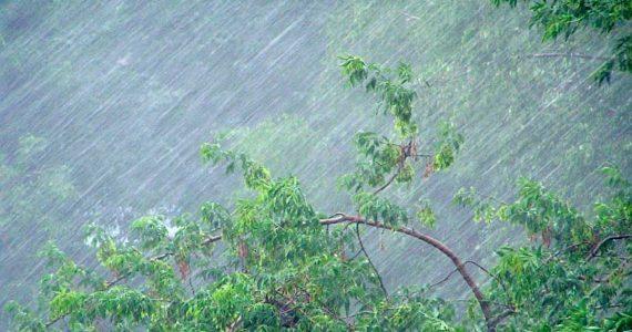 Экстренное предупреждение МЧС : ливень, гроза и шквалистый ветер ожидаются в Ставропольском крае