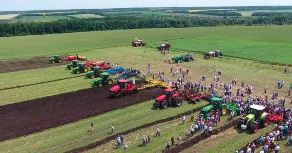 Сельхозралли и арбузная ярмарка. День поля в Будённовском районе отметят с размахом