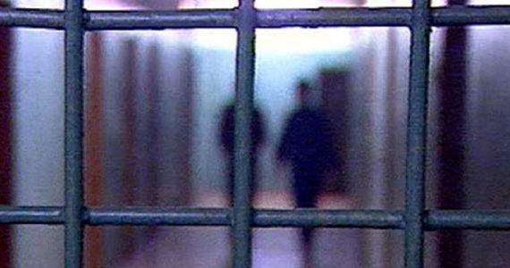 За 240 кустов марихуаны житель Предгорного района может получить 10 лет тюрьмы