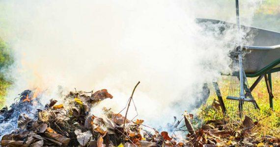 В Ессентуках штрафуют сжигателей листвы