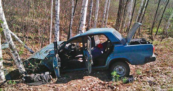 Ставропольца зажало в машине после ДТП с деревом