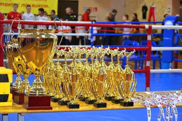 Спортсмены изНевинномысска стали чемпионами главенства покикбоксингу