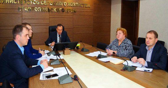 Ставропольским инвесторам в АПК вернули господдержку