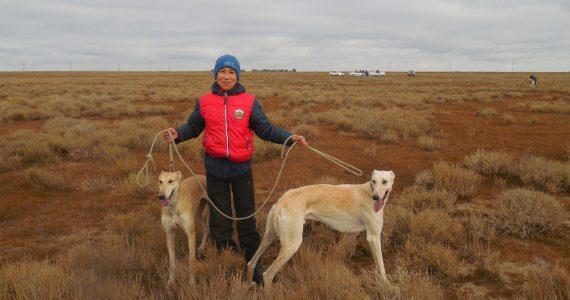 Состязания борзых собак прошло в Арзгирском районе