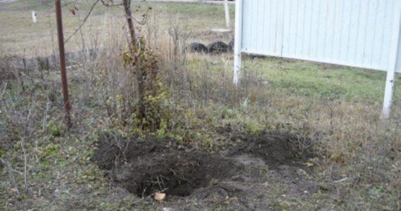Ставропольчанка похоронила мёртвую дочку во дворе